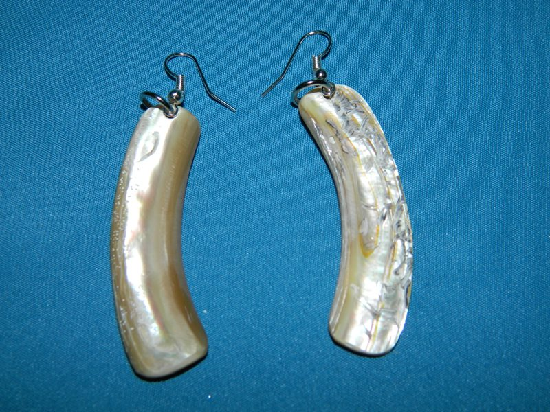 Earings---Abalone-Rim-CodeJE05B